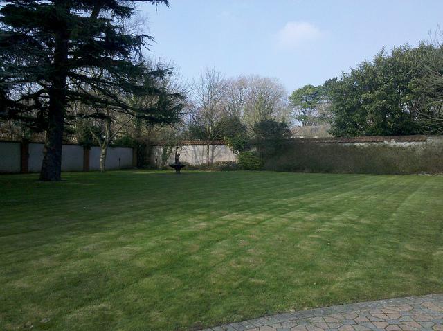 Ambience Grounds Maintenance
